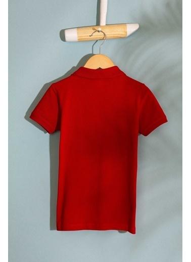 U.S. Polo Assn. Tişört Kırmızı